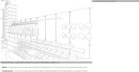 54_freedomproposal--7.jpg
